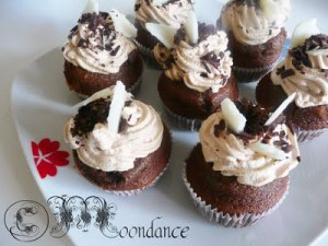briose_cu_ciocolata_si_ness